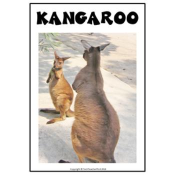 Australian Animals Craft Mammals Writing Tasks