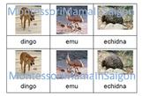 Australian Animals Montessori Three Part Cards