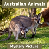 Australian Animals | Mystery Picture | Interactive Boom Cards