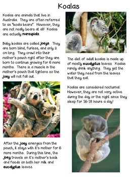Australian Animals | Differentiated Texts | Close Reading
