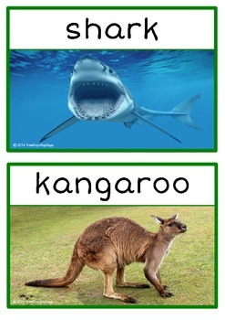 Australian Animals Photo Set