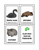 Australian Animals Picture Word Flash Cards