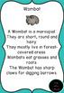Australian Animals Posters