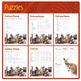 Australian Animals (Puzzles & Fun Stuff)