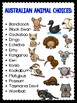 Australian Animals {Researching and Presenting Research} U