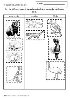 Australian Animals Sort - Mammals, Reptiles and Birds - Classifying - Test