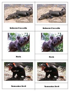 Animals of Australia:Montessori Three Part Cards