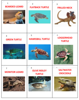 Australian Animals Tic Tac know