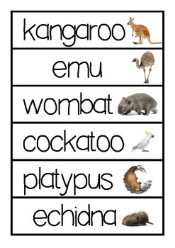 Australian Animals Word Wall