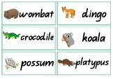 Australian Animals Word Wall
