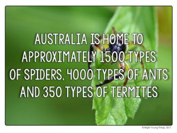 Australian Fact Posters