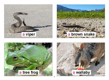 Australian Flashcards with Vocabulary