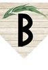 Australian Flora Themed Bunting #ausbts18