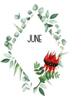 Australian Flora Themed Months/Birthday Display (editable) #ausbts18