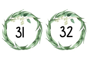 Australian Flora Themed Numbers 1-50 (Editable) #ausbts18