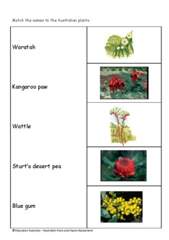 Australian Flora and Fauna Assessment - Plants & Animals Test