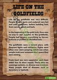Australian Gold Rush Posters