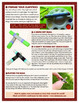 Australian Instruments - Make Your Own Bilma (Clapsticks)