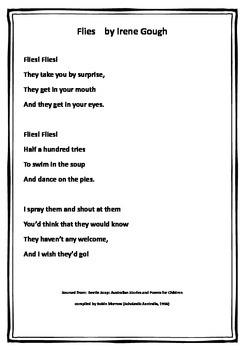 Funny Australian Poem Focus Flies! Comprehension/Worksheets/Language tasks 1-3