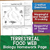 Addition To 20 Worksheets Enzymes Miniunit Worksheets Graphing Activities And Paper  Science Comprehension Worksheets Word with Art Vocabulary Worksheets Pdf Measurement Deeper Thinking Questions Chemistry Homework Worksheet   Product Thumbnail Rainbow Facts Worksheets Pdf