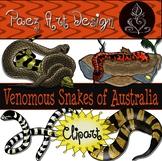 Australian Venomous Snakes CLIPART {Paez Art Design}