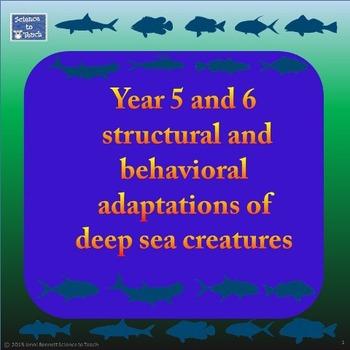 Australian Version - Adaptations of deep sea creatures