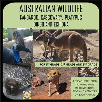 Australian Wildlife - Kangaroo, Cassowary, Platypus, Dingo and Echidna
