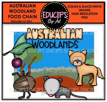 Australian Woodland Food Chain Clip Art Mini Bundle {Educlips Clipart}