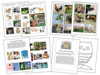 Autism, Pre-K, Animal and Action Words Language & Literacy Activities