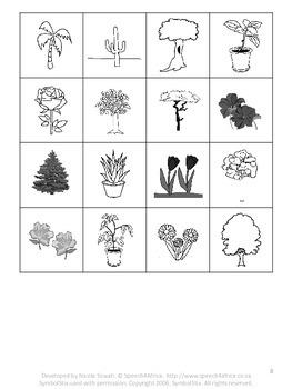 Autism Activities: Sorting Plants vs Furniture