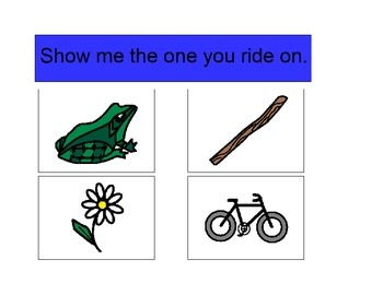Activity For Students with Autism - RECEPTIVE BY FUNCTION