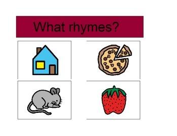 Autism Activity - WHAT RHYMES?  (PECS)
