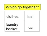 Activity For Students with Autism - WHICH GO TOGETHER?