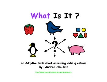 Autism Adaptive Book - WHAT is it? by green bean kindergarten