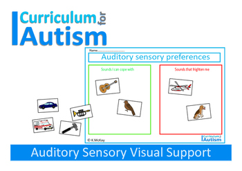 Autism Auditory Preferences Sensory Visual Support