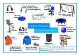 Autism Sensory Strategies FREE Poster OT