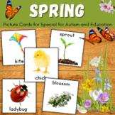 Spring Vocabulary Cards for Autism