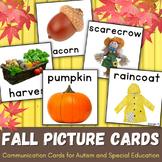 Fall Vocabulary Cards for Autism