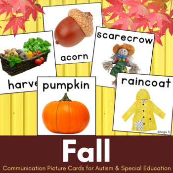 Autism Communication Cards- Fall