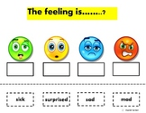 """""""Autism"""" Emotions and Feelings Cut & Paste"""