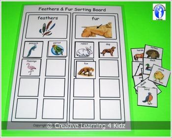 Feathers & Fur Sorting Board
