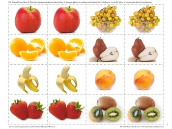 Autism File Folder Picture Match - Fruit