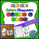 Autism Middle & High School Classroom Visual Rules & Cuein