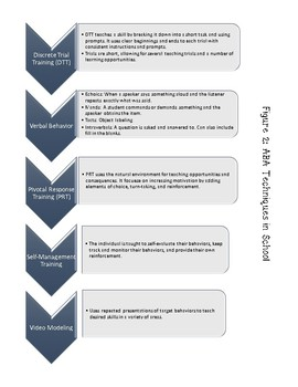 Autism Paraprofessional Training Manual