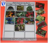 Plant Food Sorting Board