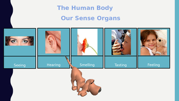 Autism: Power Point: Human Body and Senses