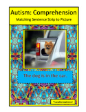Autism: Comprehension