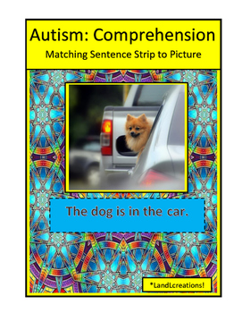 Autism: Comprehension
