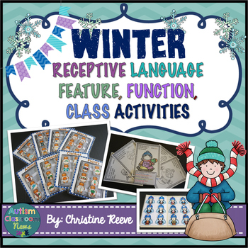 Autism Receptive Vocabulary Activities for Winter: Feature Function Class