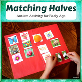 Autism & Special Needs Activity- Matching Halves